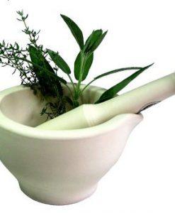 Ubat herba tradisional